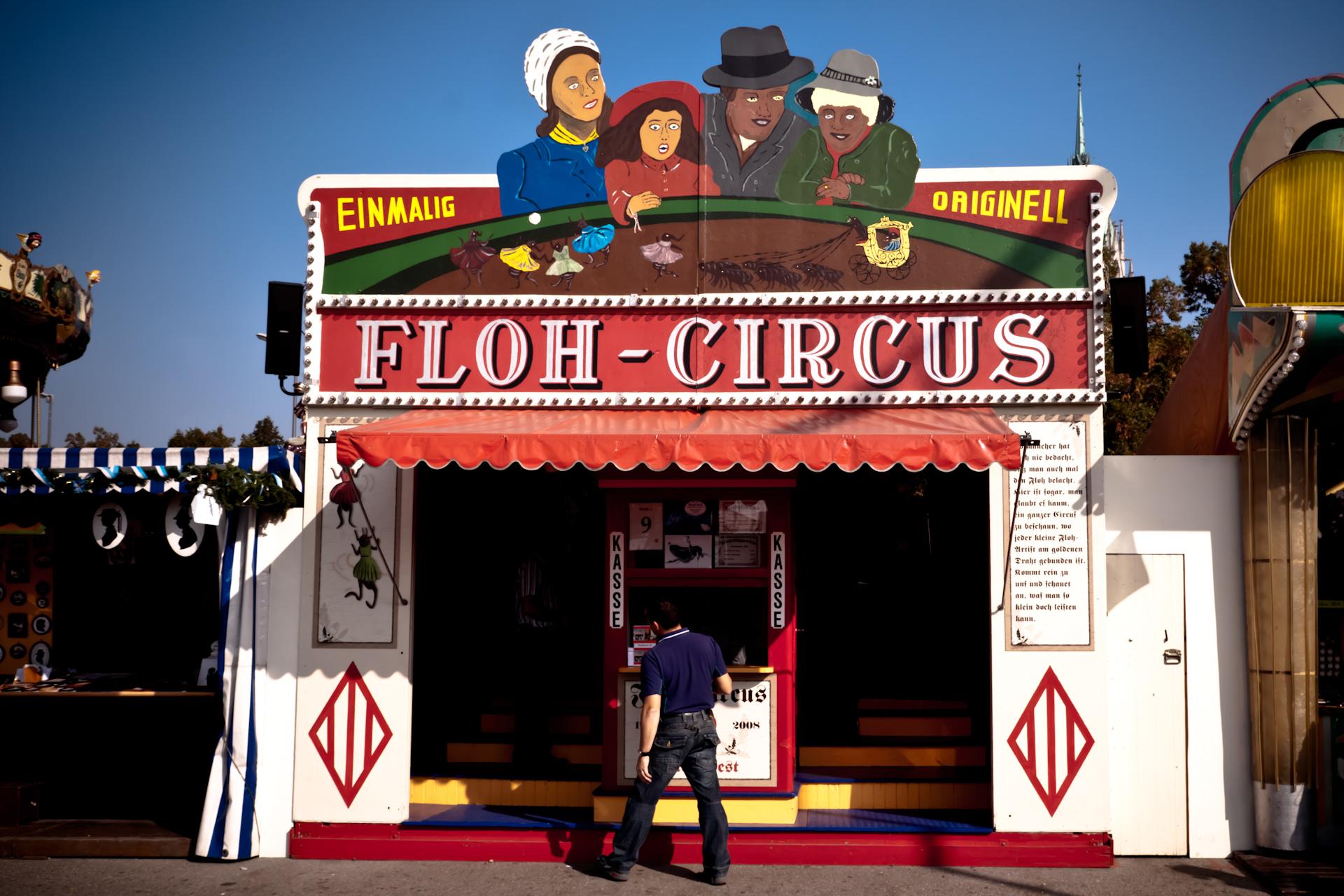 Circo de Pulgas